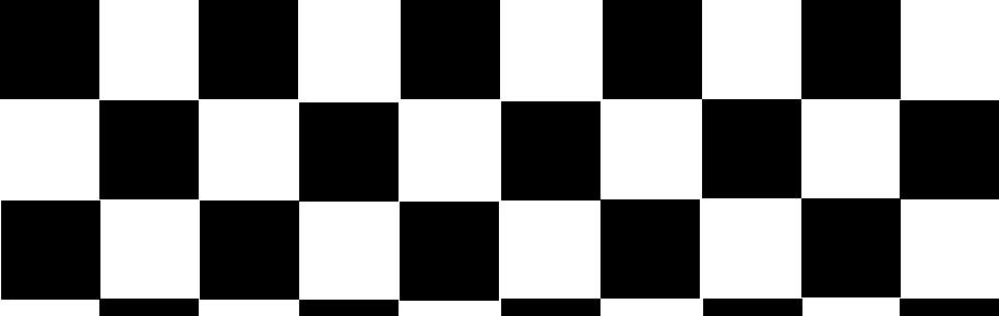 Race Car Flag Banner